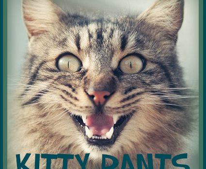 Characterization and Wisdom–Kitty Rants